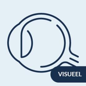 inclusieve BVO voor mensen met een visuele beperking